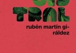 magistral-ruben-martin-giraldez-1